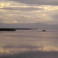Западная часть озера Невского