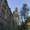 Консультации, помощь и сопровождение при поступлении в университеты США. Йель.