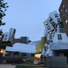Консультации, помощь и сопровождение при поступлении в университеты США. МIT - Массачуссеттский технологический институт, кампус.