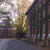 Консультации, помощь и сопровождение при поступлении в университеты США. Принстон.