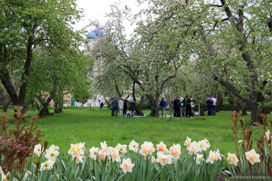 """Майская встреча проводилась на уже ставшем знаменитом месте в Московском парке """"Коломенское"""" под яблоней в цветущем яблоневом саду."""
