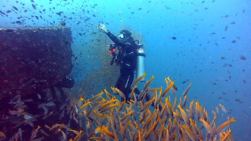 Подводный гид Дмитрий Поляков на затопленном у острова Ко-Чанг Большом десантном корабле.