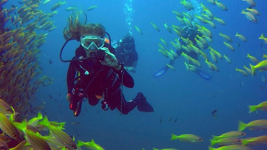 """Подводный гид Алёна Костина в стае цезий на дайвсайте """"Chang Wreck""""."""