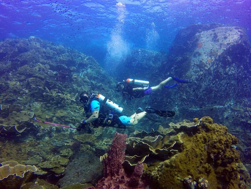Коралловый дайвсайт скала Хин-Лак-Бат у острова Ко-Чанг.
