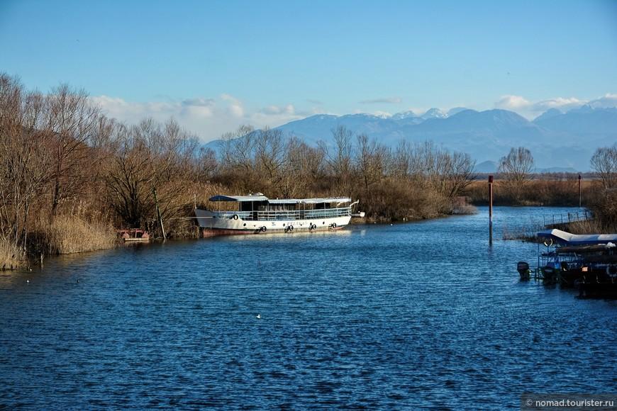 Одно из самых интересных мест было Скадарское озеро, и даже не озеро, как таковое, а небольшая речушка, протекающая через городок Вирпазар, и впадающее в озеро. Именно отсюда, в сезон, можно нанять лодку, и поплавать по озеру в поисках пеликанов и других птиц. Тут же находится главный офис Скадарского нац. парка.