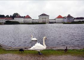 Нимфенбург под дождём