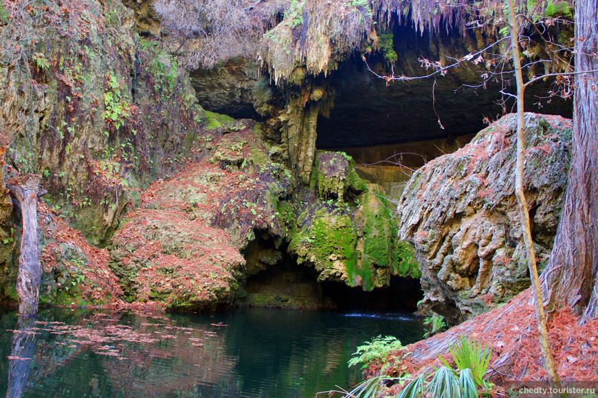 Вход, или может вплыв в пещеру, красное на земле это иголки аризонской лиственницы.