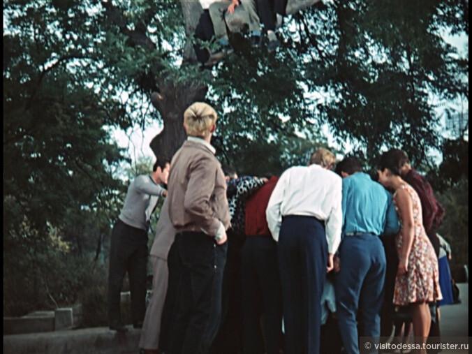 1965 Операция Ы и другие приключения Шурика, реж.Гайдай. 70 миллионов зрителей! самая посещаемая картина за всю историю советского кинематографа!