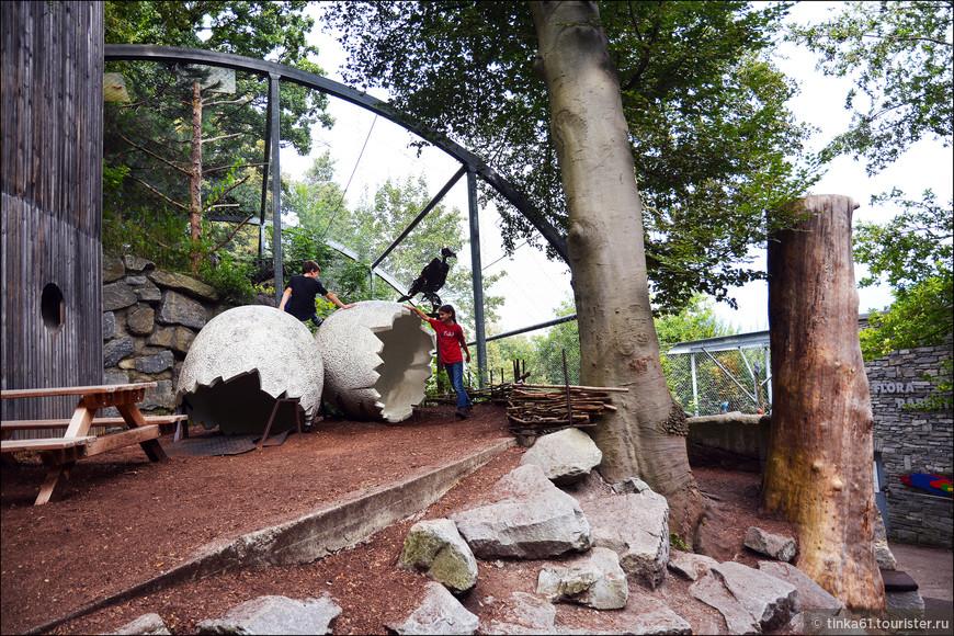 Для детей там устроены разные игровые площадки. Думаю, если кто путешествует с детьми, то зайти в этот зоопарк нужно непременно.