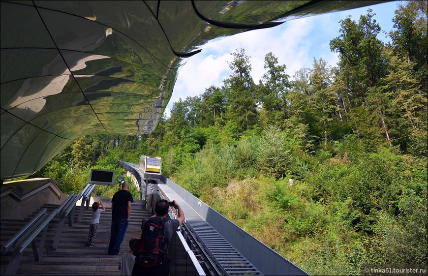 Промежуточная остановка  Alpinе Zoo.