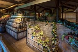 В Италии открылся винный город-музей