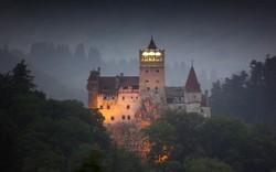 В Румынии «Замок Дракулы» закрыли для туристов из-за медведей