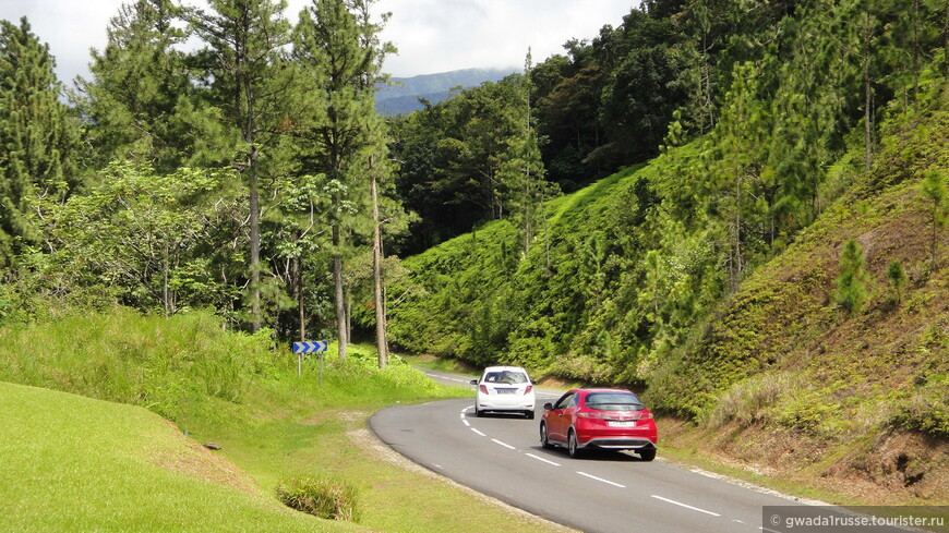 Горный перевал Мамель:  в самом сердце Национального парка Гваделупа.