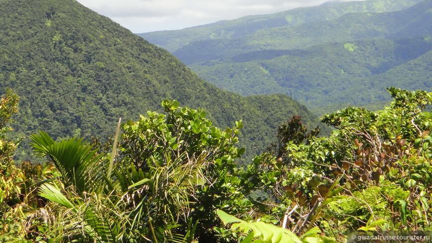 Вид на горно-вулканический массив острова Бас-Тер.
