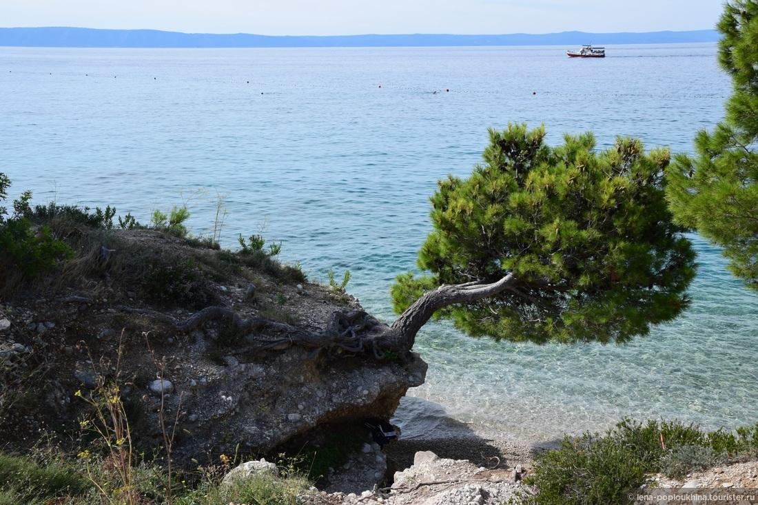 Волшебное побережье Адриатического моря