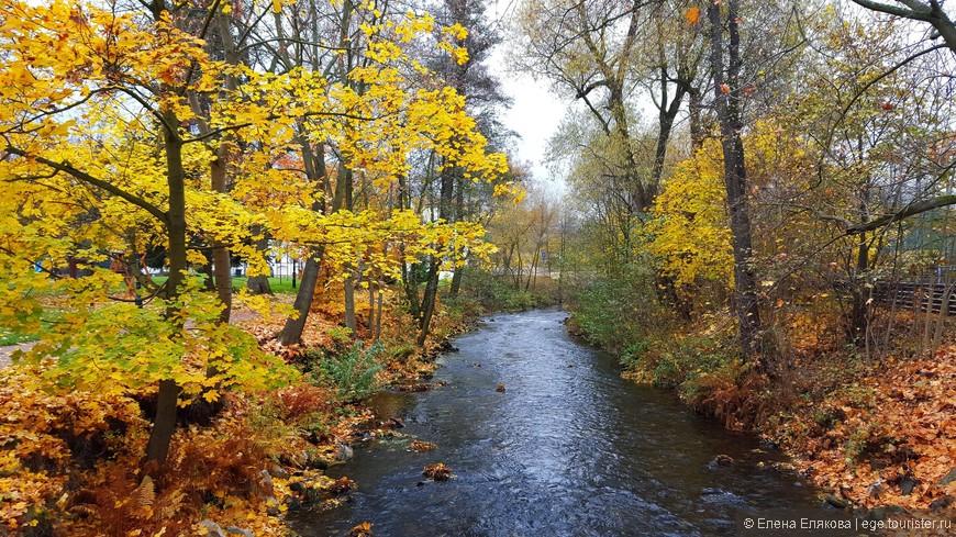 Через парк протекает речка Быстрица.