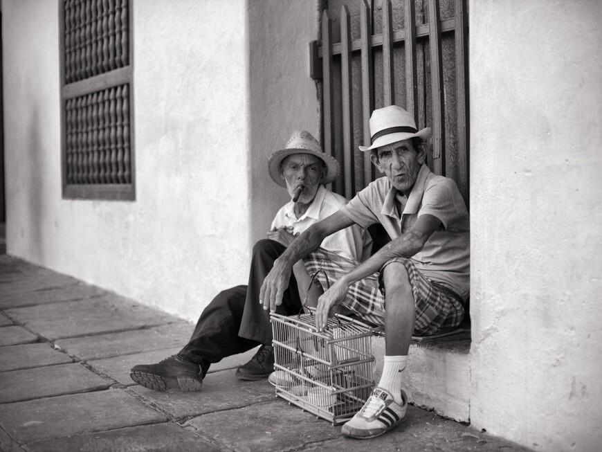 Судя по обилию фотографий в сети с этими двумя друзьями, сидят они там ооооочень давно.