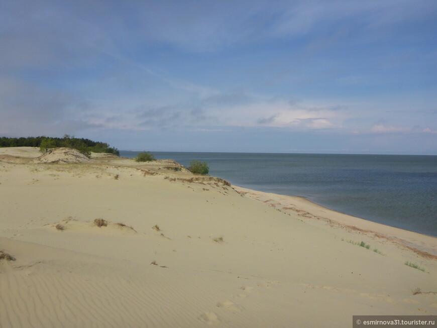 Дюны на берегу Куршского залива