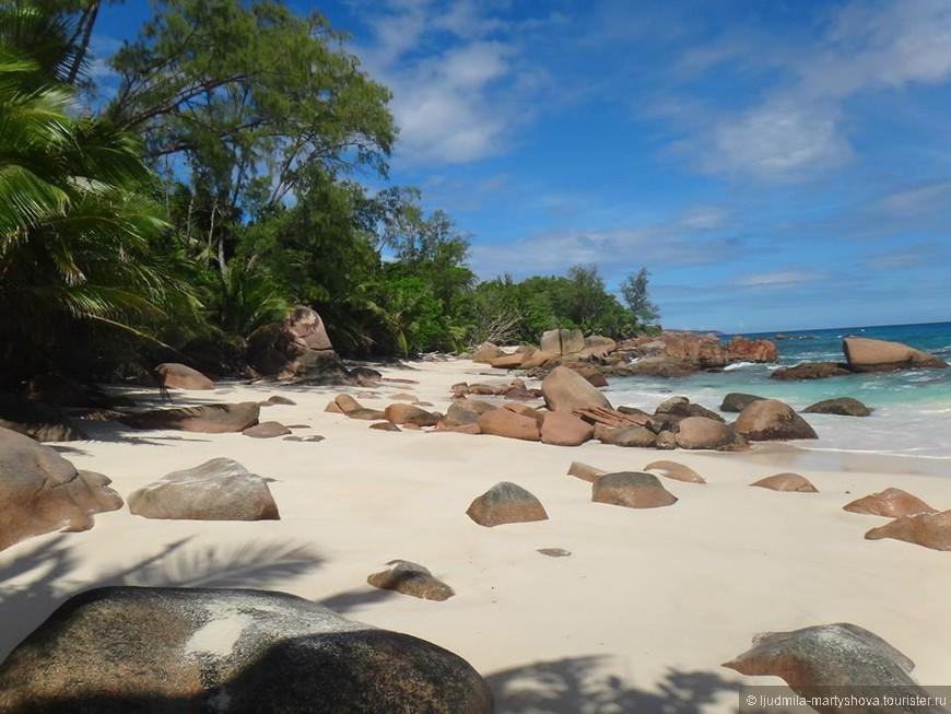 И еще вид этого уютного, необыкновенно красивого пляжа! Стоило того, чтобы пробираться сквозь мангровые заросли!