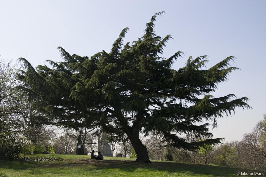 Гринвичский парк (англ. Greenwich Park)