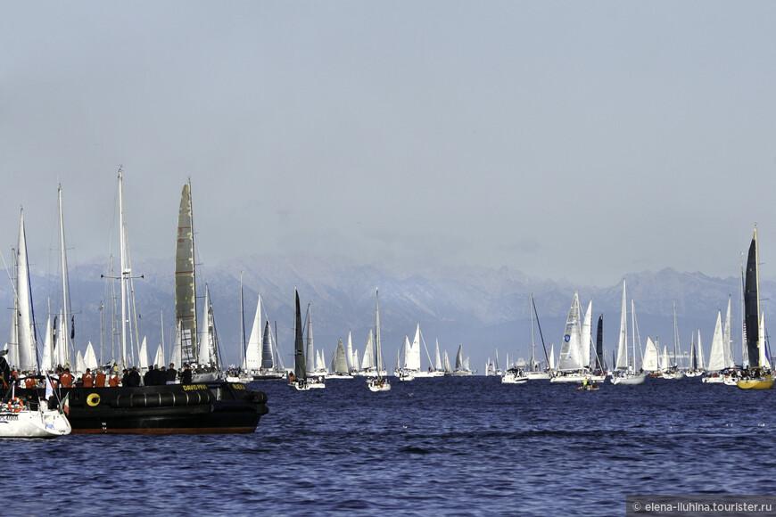 Барколана стала одной из посещаемых регат в мире. В последние годы количество участников доходило и превосходило 2 тысячи судов.