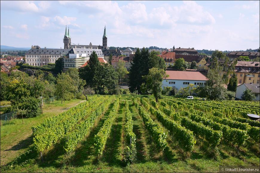 И пасторальные виноградники, раскинувшиеся вокруг монастыря.