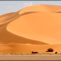 Алжирская Сахара, день третий — инопланетяне и ночь в песках