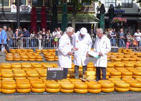 Сырный аукцион в Алкмаре