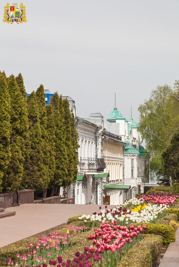 Ставрополь. Фрагмент улицы Дзаржинского (Александровская, Третья Мещанская)