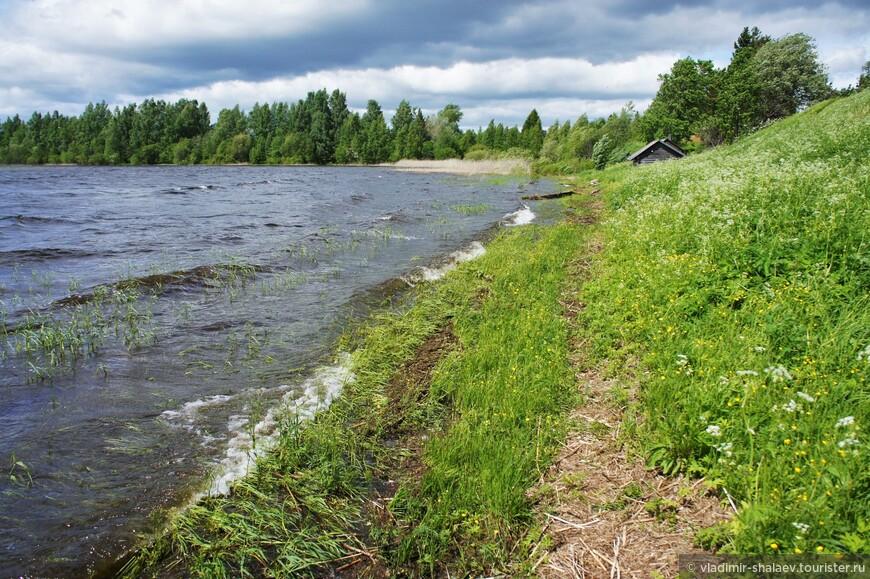 Берег Ферапонтовского озера.