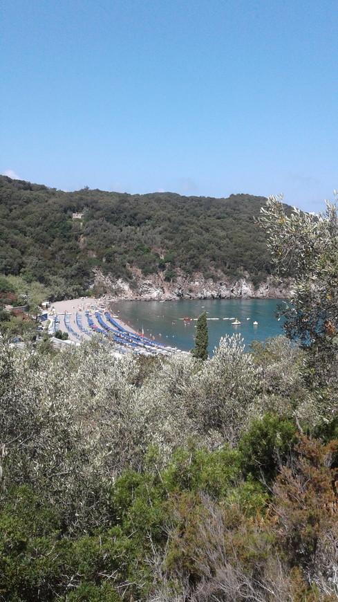 В парке Негомбо можно купаться и на море, и в термальных источниках.