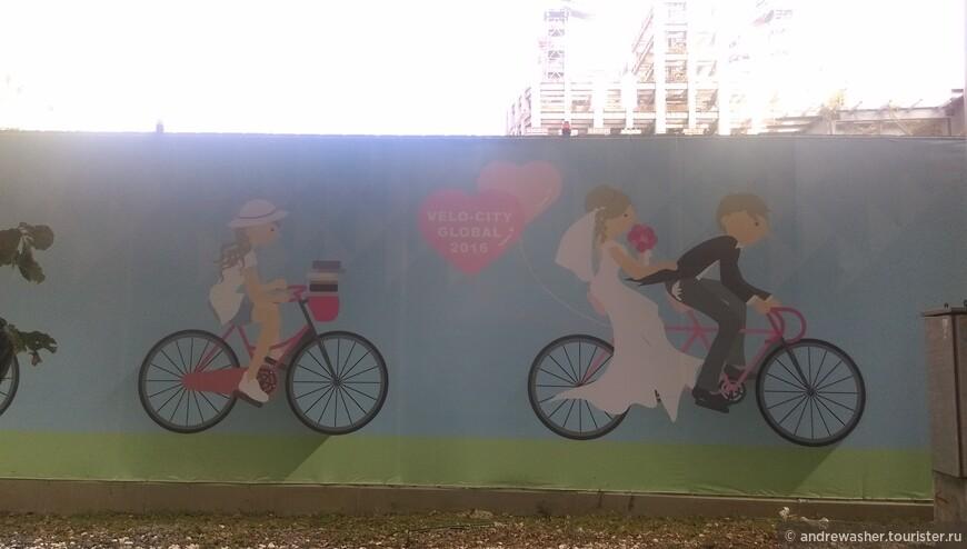 Здоровый образ жизни. Все на велосипеде.