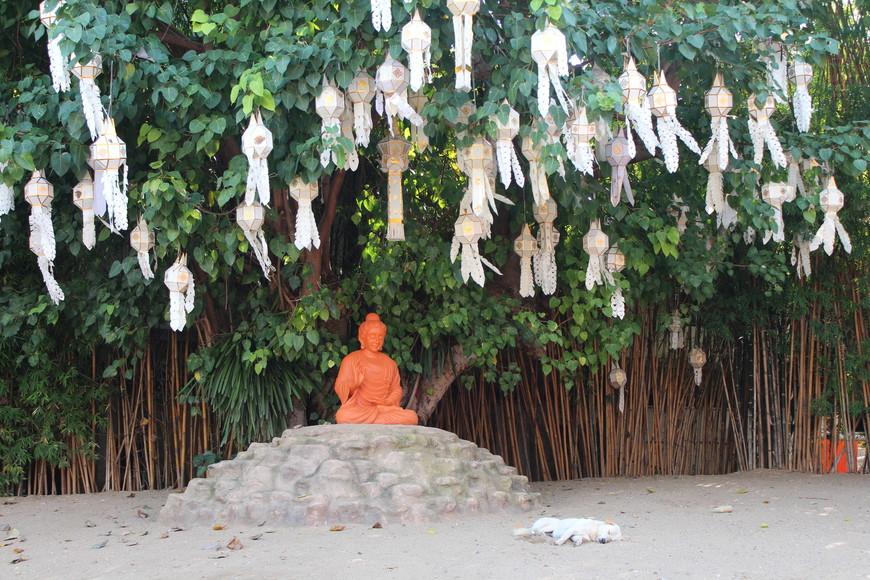 Охранник Будды спит,а служба идёт.