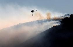 Франция страдает от лесных пожаров