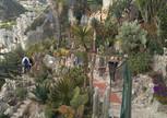 Парк экзотических растений