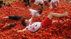 Знаменитая «Томатина» в Испании состоится 30 августа