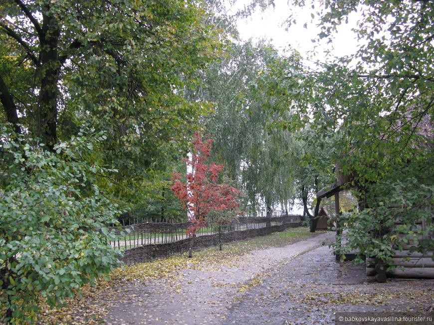Довольно большой двор. С невероятной красоты деревьями и деревцами