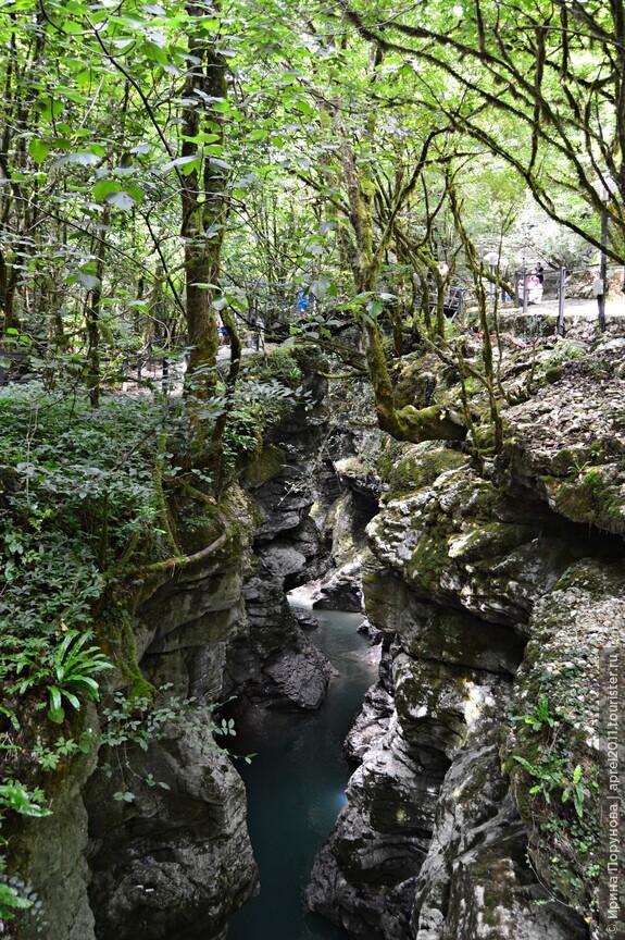 Три яруса - вода, скалы и лес