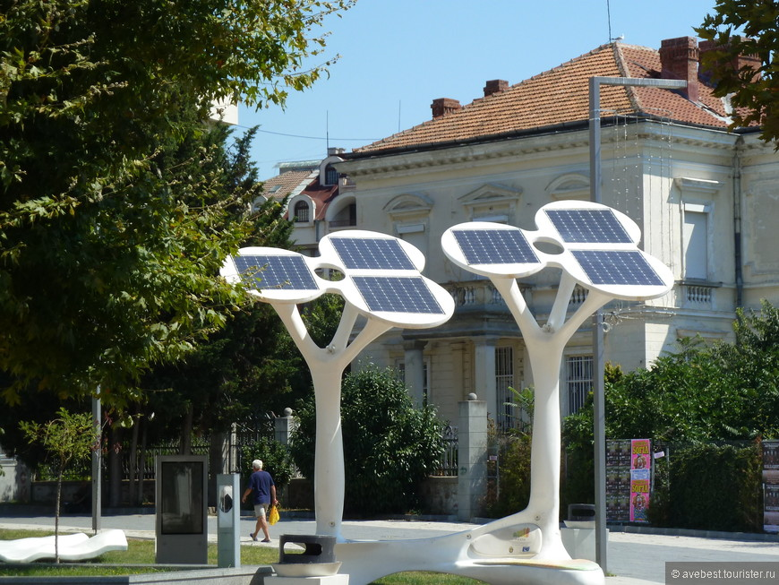 Солнечные батареи на импровизированных деревьях.
