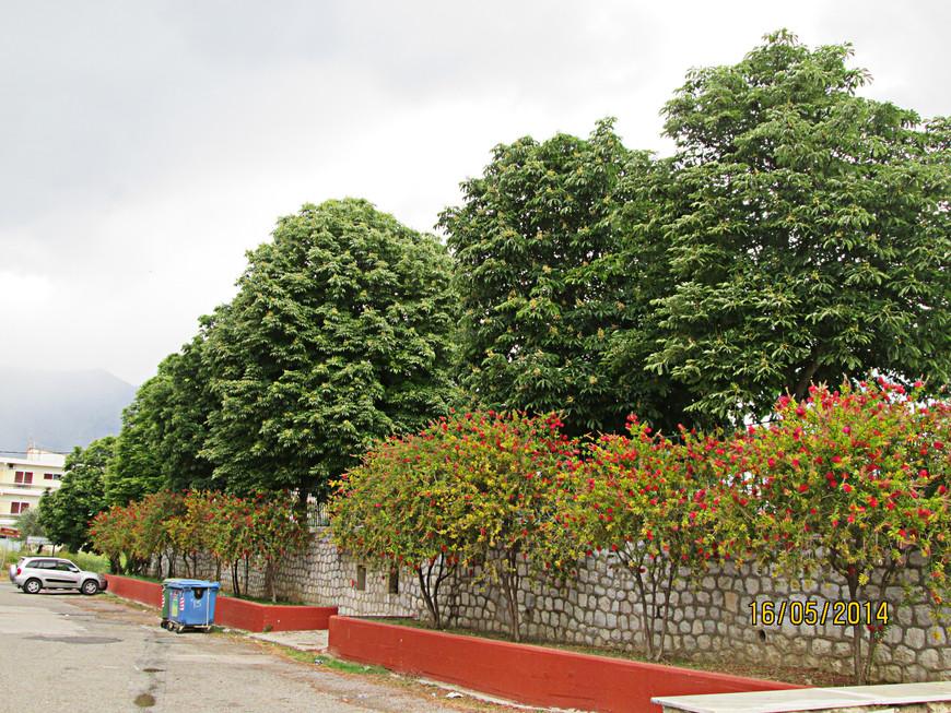 Слева от стадиона тянется улица Акрополя.