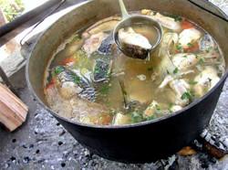 На рыбном фестивале под Тюменью приготовят более 500 литров ухи