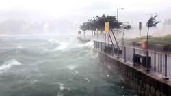 Число жертв тайфуна в Китае возросло до 12 человек