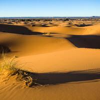 Все пустыни друг другу от века родны… САХАРА