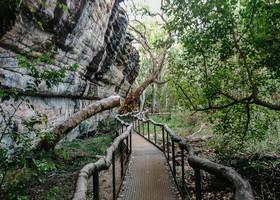 Дарвин. Национальный парк КАКАДУ
