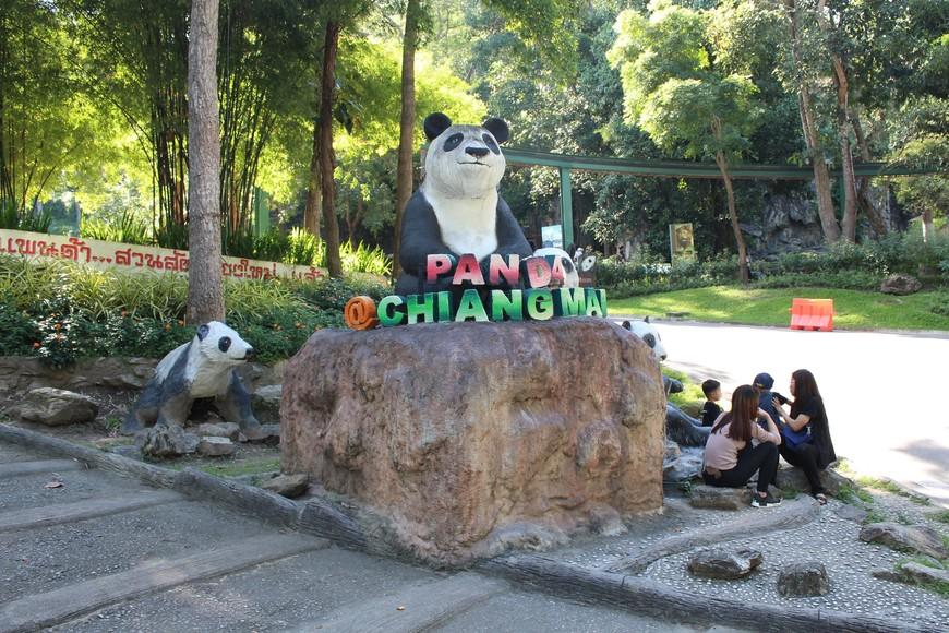 За вход к пандам надо покупать отдельный билет-100 бат.