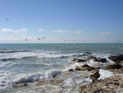 Российская часть акватории Каспия пересохнет уже через 75 лет