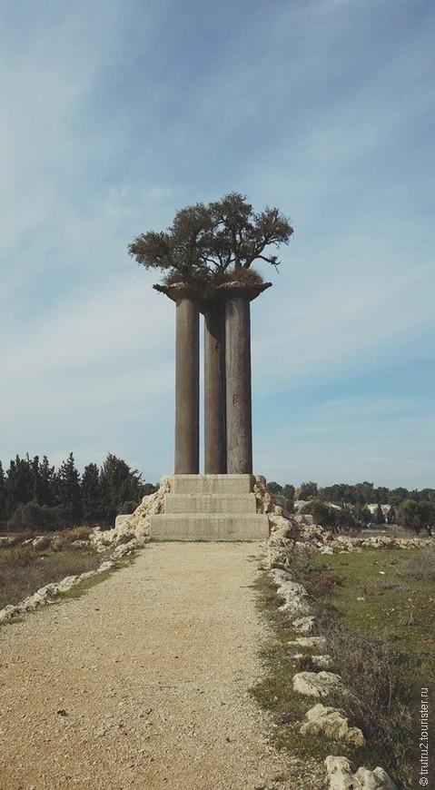 Кибуц Рамат Рахель, композиция из 3-х оливковых деревьев на столбах Рана Морина