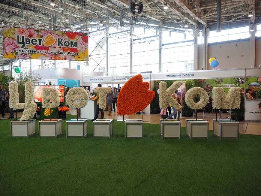 Еще одна инсталляция из живых цветов одной из крупнейших флористических компаний России