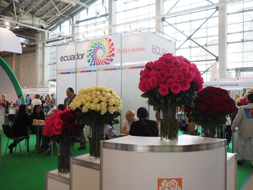 Еще один вид павильона, посвященного эквадорским розам