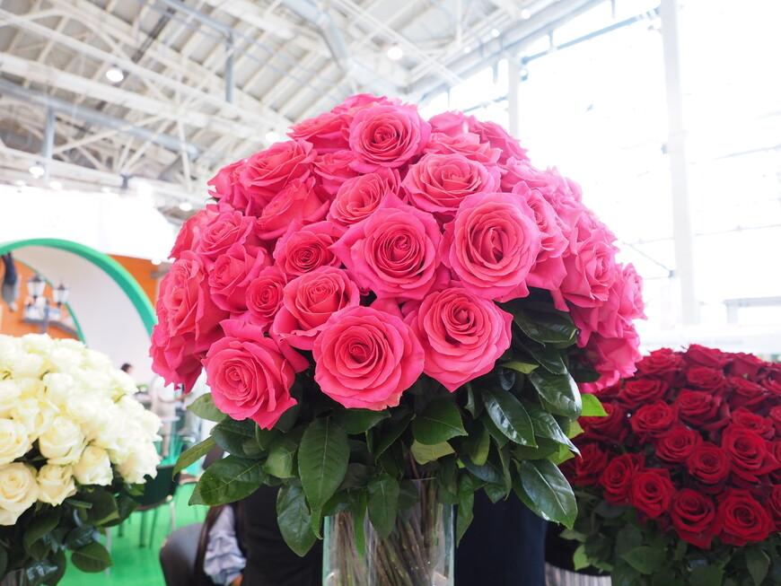 Еще один букет эквадорских роз
